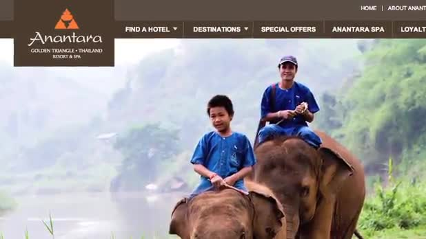 World's Most Expensive Coffee Made From Elephant Dung