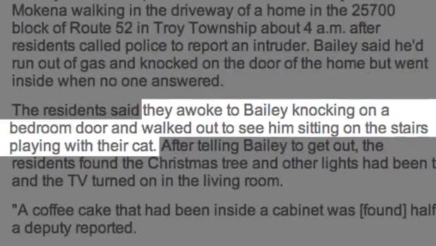 Burglar Plays With Cat and Turns Christmas Lights On