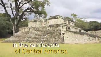 Copán Ruins - Great Attractions (Honduras)