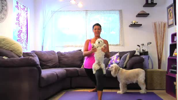 Doga: Standing Poses for Small Dogs
