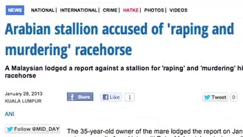 Mare Reportedly Raped and Killed by Stallion