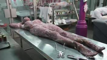 Stunt Has Butcher Shop Displaying Human Body Parts