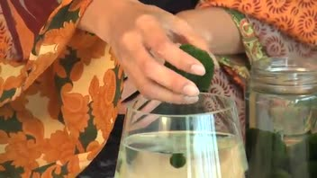Marimo Aquariums