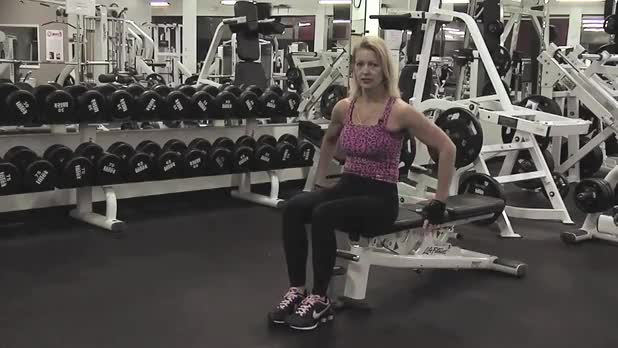 Seated Dumbbell Knee Raise - Women's Fitness