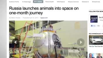 Mice and Gerbils Sent into Space