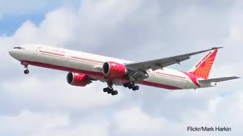 Air India Passenger Served Worm Sandwich