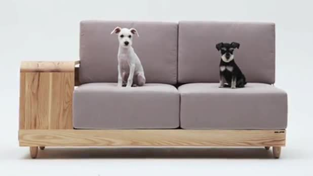 New 'Dog House Sofa' Allows Pet and Owner to Sit Together
