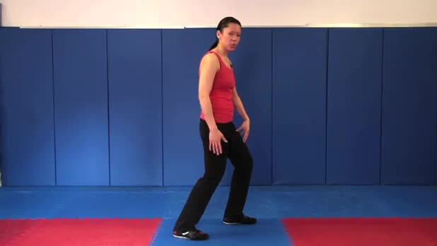 Tai Chi: Fair Lady at the Shuttle - Women's Fitness