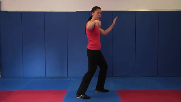 Tai Chi: Snake Creeps Down - Women's Fitness