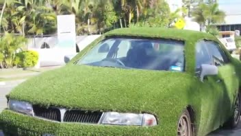 AstroTurf Car for Sale on eBay