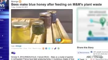 Beekeepers Astounded By Blue Honey