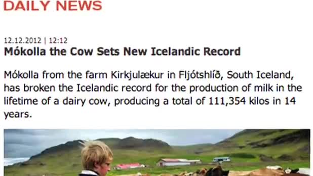 Cow Sets Record in Iceland for Milking