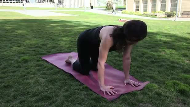 Yoga Elbow Plank - Women's Fitness