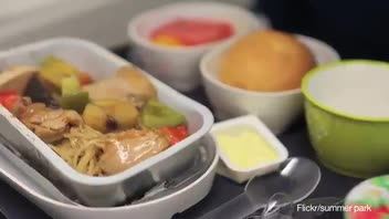 Needles Found in Airline Meal