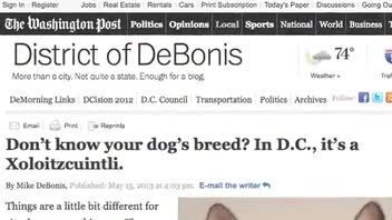 New DC Rule Requires Unidentified Dog Mixes Be Called Xoloitzcuintli